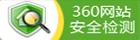 360網站檢測